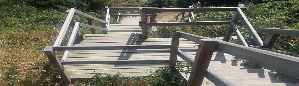 cropped-stairs-288.jpg